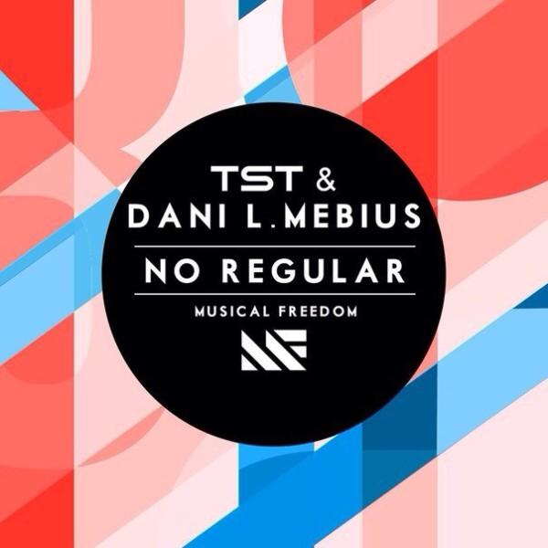 TST & Dani L. Mebius - No Regular (Original Mix) (WEB) (2014)